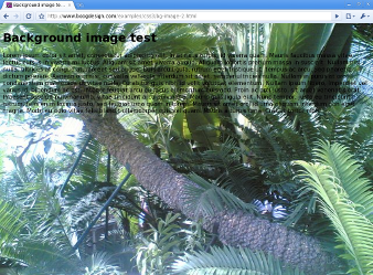 Screenshot of scaled background image in Chromium