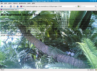 Screenshot of scaled background image in Firefox
