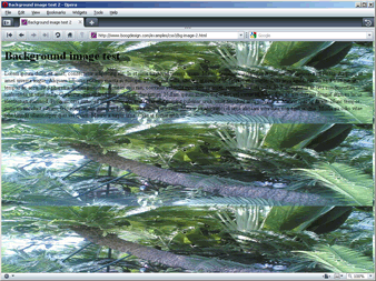 Screenshot of scaled background image in Opera 10